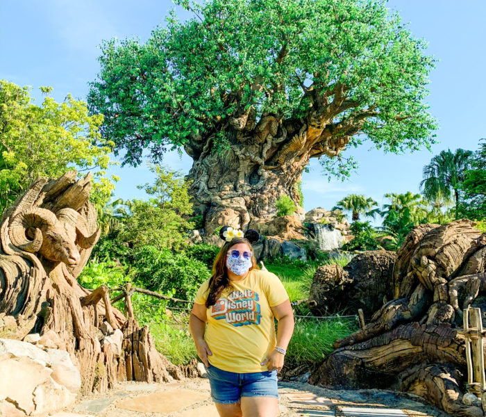 New Health And Safety Measures At Disney's Animal Kingdom